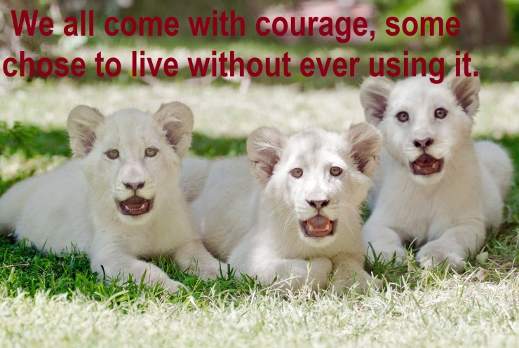 we all have courage